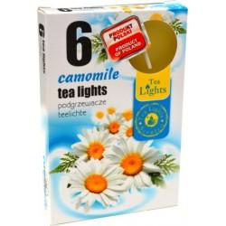 Illatos teamécsesek (6db) - Kamilla