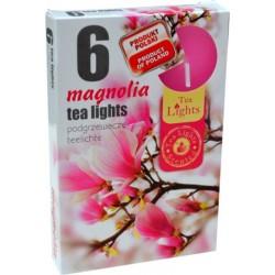 Illatos teamécsesek (6db) - Magnólia