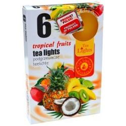 Illatos teamécsesek (6db) - Trópikus gyümölcsök