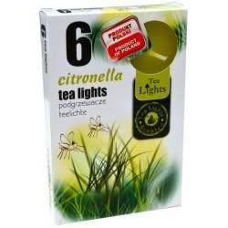 Admit illatos teamécsesek - 6 db - Citronella