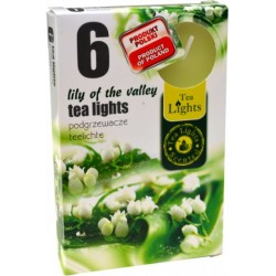 Admit illatos teamécsesek - 6 db - Gyöngyvirág