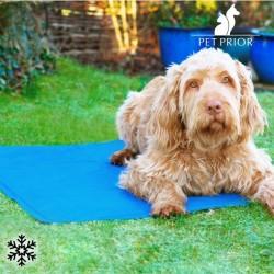 Pet Prior hűtő szőnyeg kiskedvenceknek