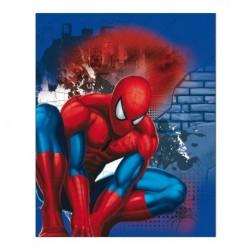 Gyerek kétoldalas takaró - Spiderman - 150 x 120 cm