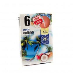 Admit teamécsesek - egzotikus gyümölcs - 6 db