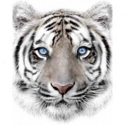 Jerry Fabrics mikroflanel pléd - fehér tigris - 150 x 120 cm