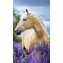 Detexpol törölköző - ló a levendulamezőn - 50 x 30 cm
