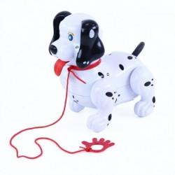 Sétáló kutya pórázzal - Rappa