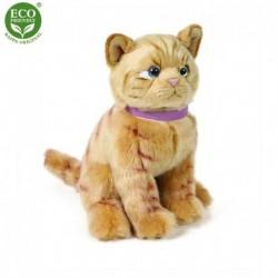Plüss macska - barna - 25 cm - Rappa